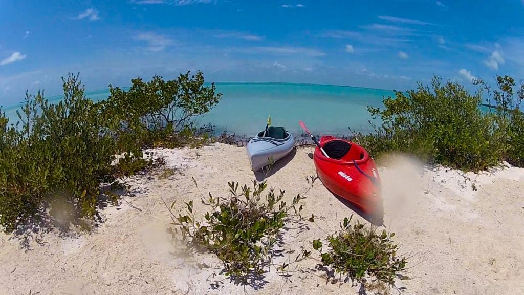 Brian Dale - Kayaks by the Beach in Nest Key Florida Keys
