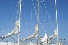 A Fleet of 22 Catalinas Ready for Guests at Key Lime Sailing Club Key Largo from Mary Reed