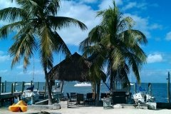 Another Beautiful Day in Paradise at Key Largo Cottages by Kevin Halverson